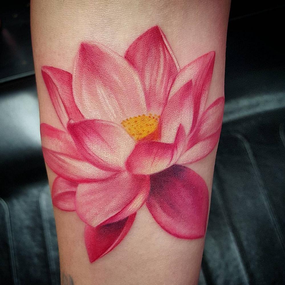 Pink Lotus Sarah Gray Artist